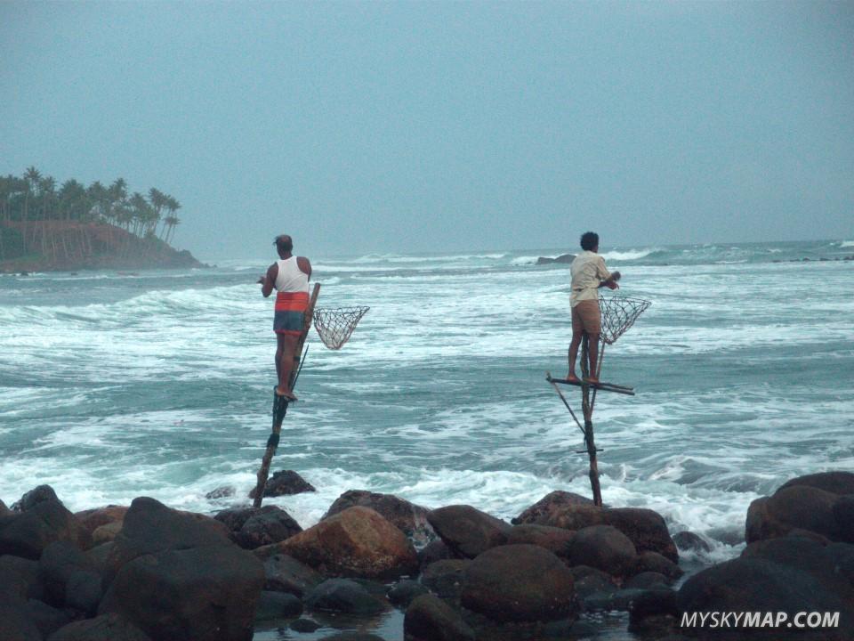 Traditional stilt fishing