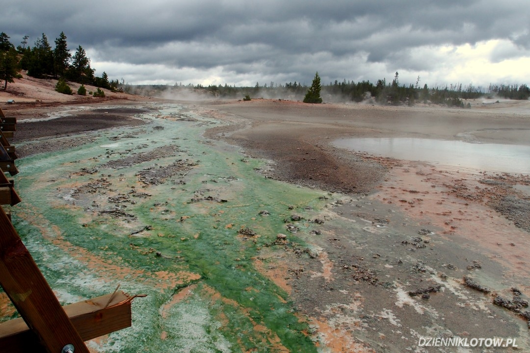 Green geyser water