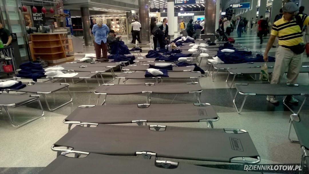 Setup beds